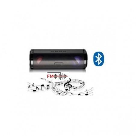 BAFFLE T-POWER R9...